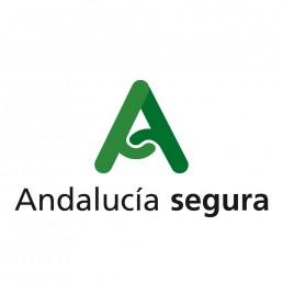 logo Andalucia segura